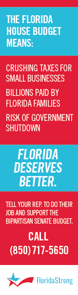 FloridaStrong-V1-160x600