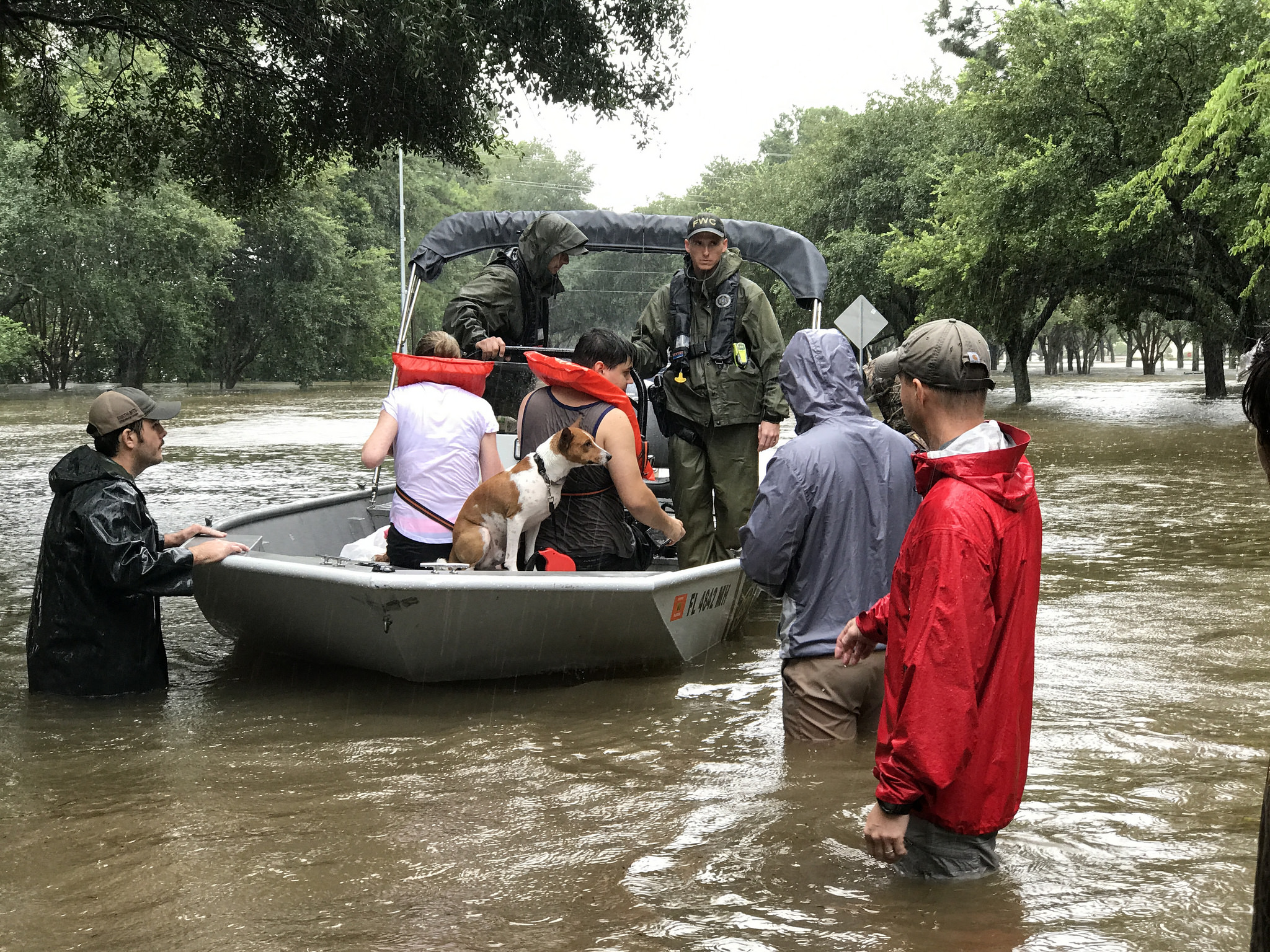 florida wildlife officers save hundreds trapped by harvey floods  rescue continues